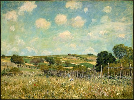 800px-Meadow,_Alfred_Sisley,_1875